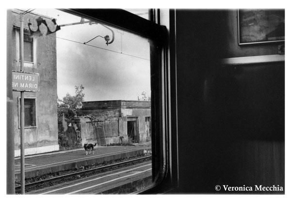 Foto-treno-Veronica-Mecchia2-(1)-(Large)