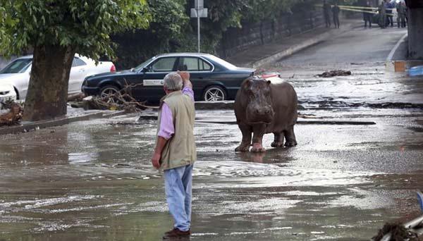 alluvione-georgiajpg
