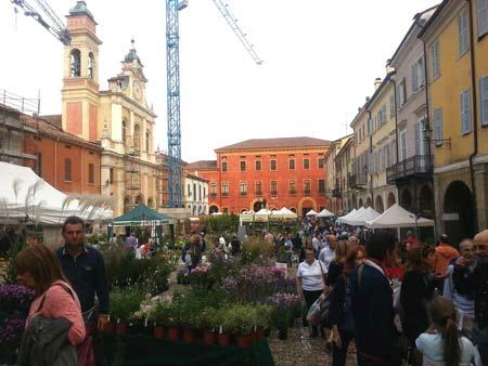 Guastalla-Piante-e-animali-perduti-015-piazza