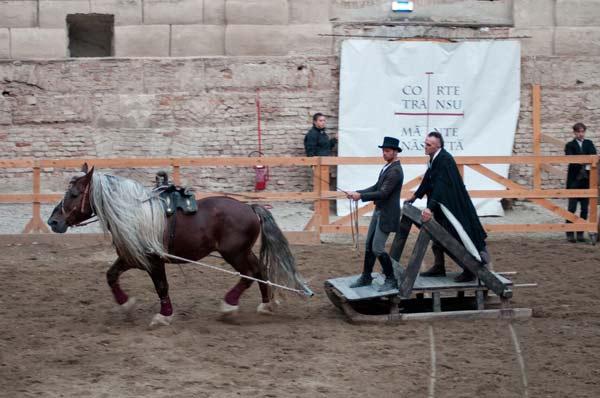 saga-opera-equestre