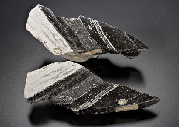 musei-google-art-project-spallanzani-pietra-vulcanica
