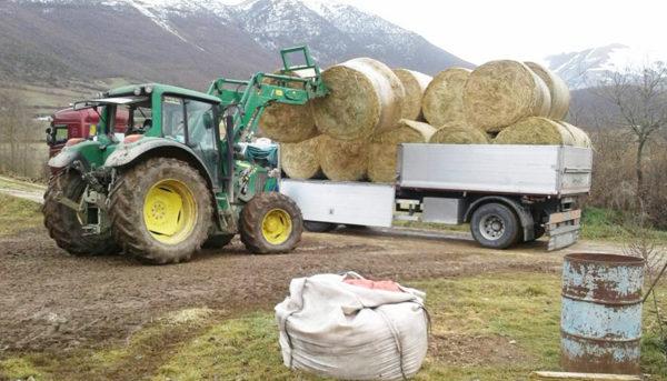 Uno dei carichi di fieno durante la consegna nelle zone terremotate 2