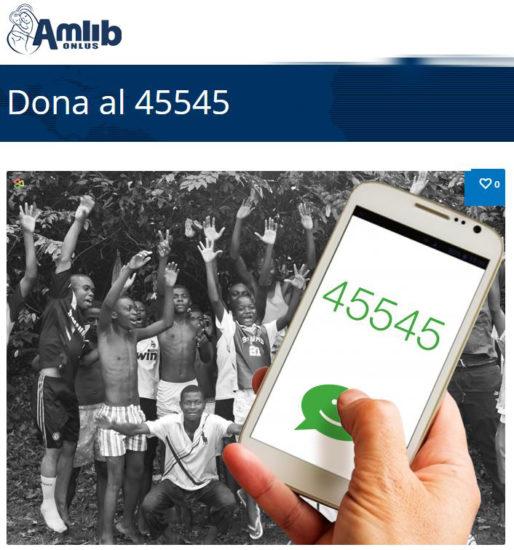 AmLib - PER INTERNO ARTICOLO